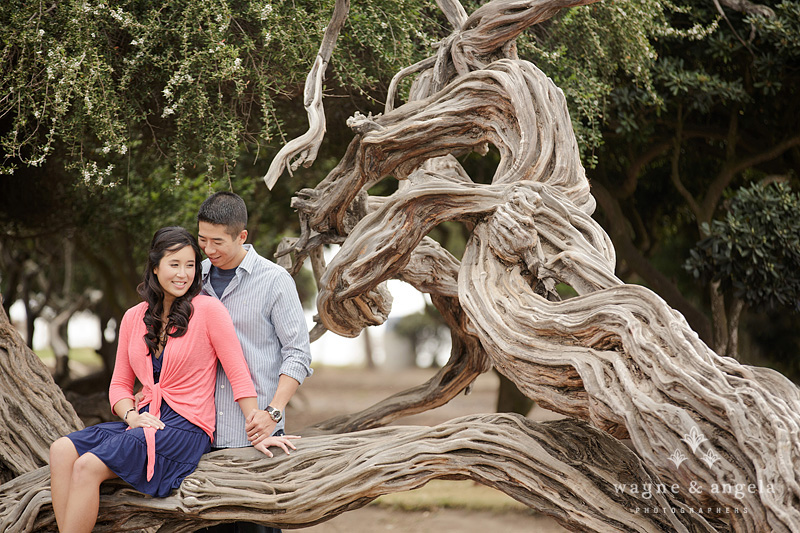 la jolla cove engagement photos
