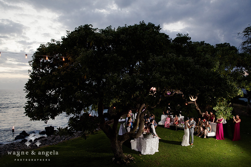 hawaii wedding venue
